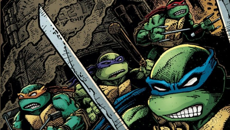 Are the Teenage Mutant Ninja Turtles Marvel or DC?