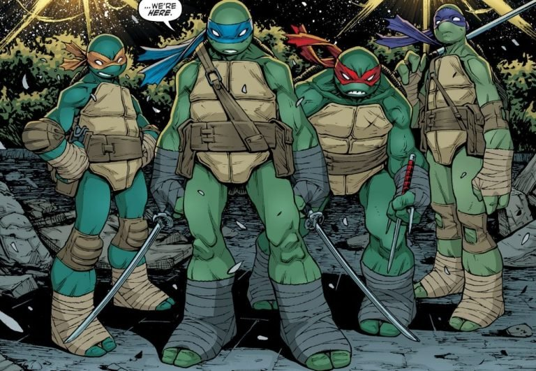 What Universe Are the Teenage Mutant Ninja Turtles Part Of?
