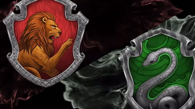 Gryffindor vs Slytherin: Differences And Which One Is Better