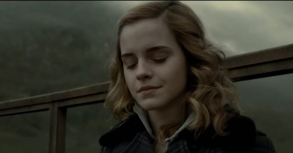 Hermione Granger's Occupations What Does She Do For A Living