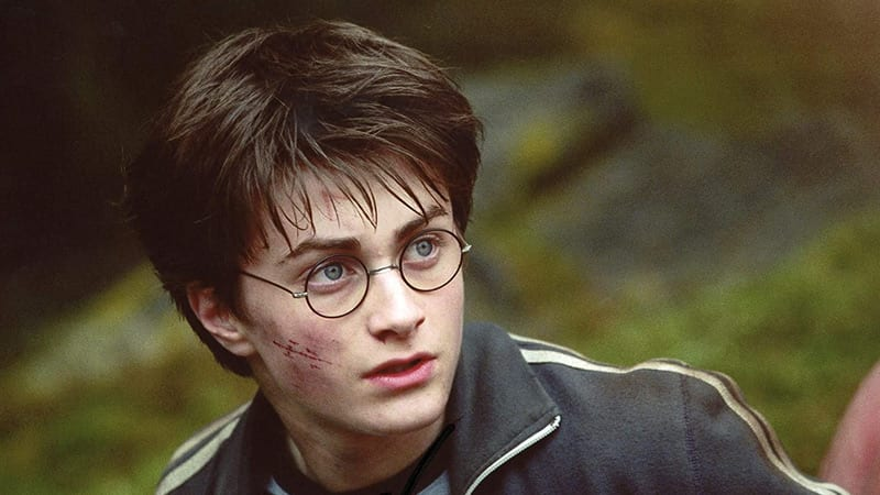 Who was the Best Harry Potter Director?