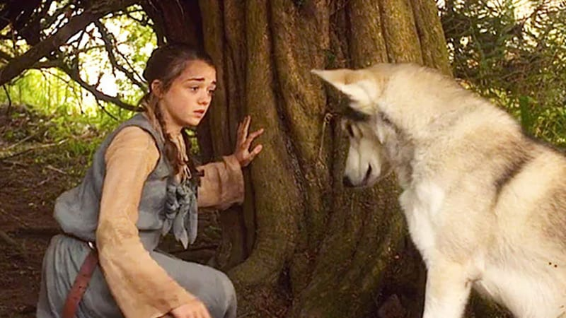 Who Is Princess Nymeria? 8 Questions About Her Answered