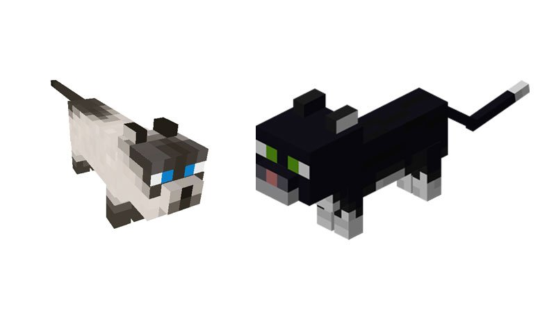 How to Tame a Cat in Minecraft? 3 Easy Steps