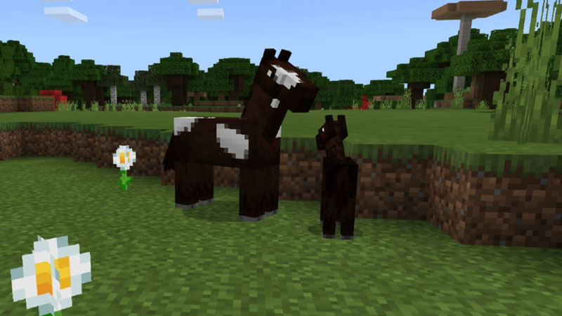 How To Breed And Tame Horses In Minecraft?