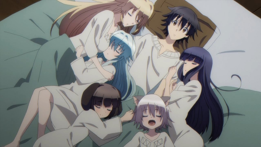 20 Best Harem Anime of All Time (Dubbed and Undubbed)