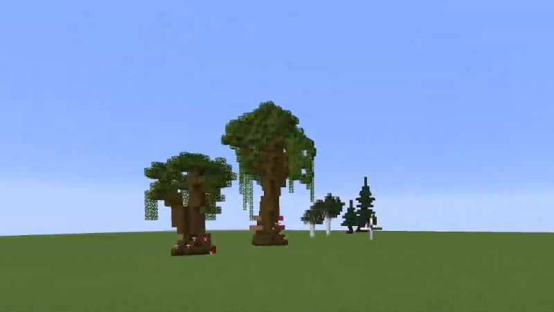 How To Grow Dark Oak Trees In Minecraft?