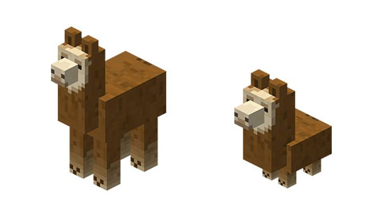What Do Llamas Eat In Minecraft?