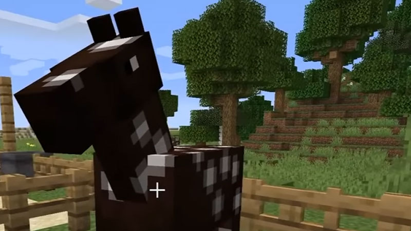 How To Put A Saddle On A Horse In Minecraft? X Easy Steps