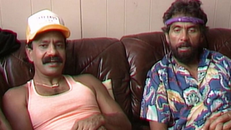 Cheech And Chong Movies in Order: The Best Watching Guide