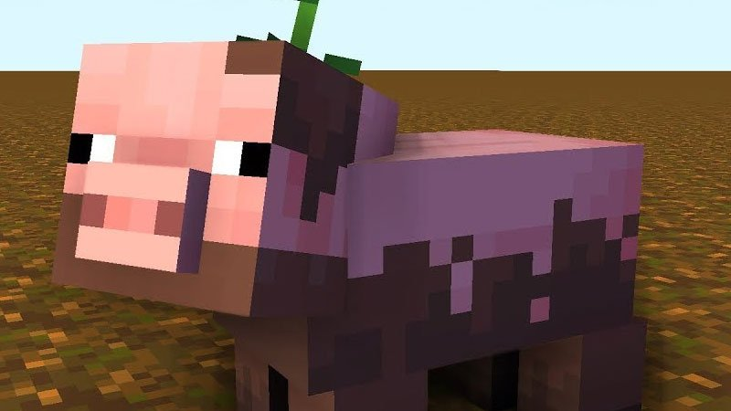 How To Breed Pigs In Minecraft?